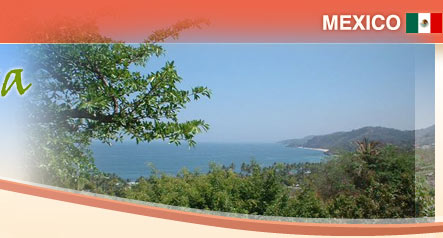 Sayulita vacation rental accommodations ocean view and gardens for Casa jardin sayulita
